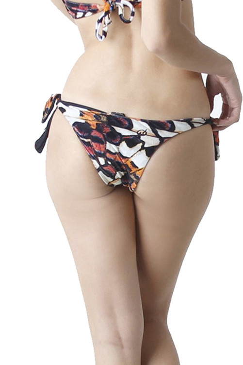 Monarch Butterfly Bottom BACK